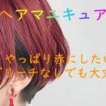 【ヘアマニキュア】やっぱり赤が好き♡ブリーチなしでも大丈夫?