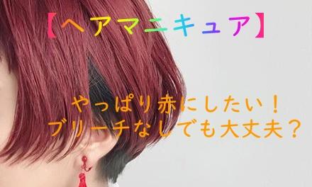 ヘアマニキュア やっぱり赤が好き ブリーチなしでも大丈夫 髪と
